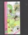 KNNV - Spinnen in Beeld