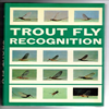 John Goddard - Trout Fly recognation