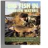 Tony Davies-Patrick / Leon Hoogendijk - Big Fish in Foreign Waters