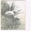 Karperstudiegroep ( KSN ) - De Karper nr. 7 - 1976