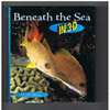 Mark Blum - Beneath the Sea in 3-D