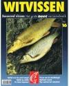2e serie - Het grote Beet-verzamelwerk nr. 16 - Succesvol Vissen 16 - Witvissen