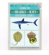 LJV Compagno / DA Ebert / MJ Smale - Guide to the Sharks and Rays of Southern Africa