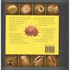 Kenneth Wye - Het Schelpen Handboek
